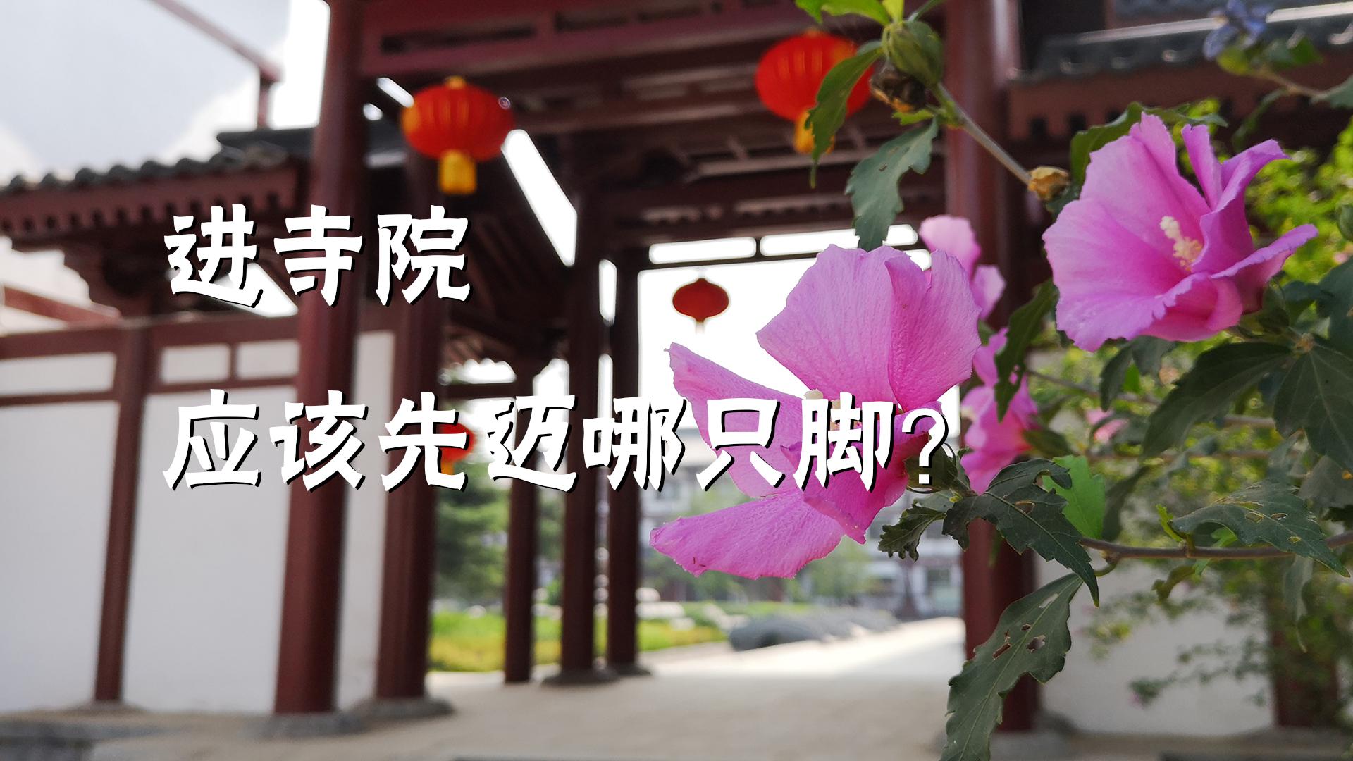 问禅小师兄》第三期:进寺院应该先迈哪只脚?